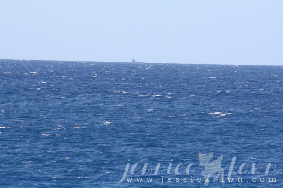 Whale watching with… no whales. | JessicaFawn.com