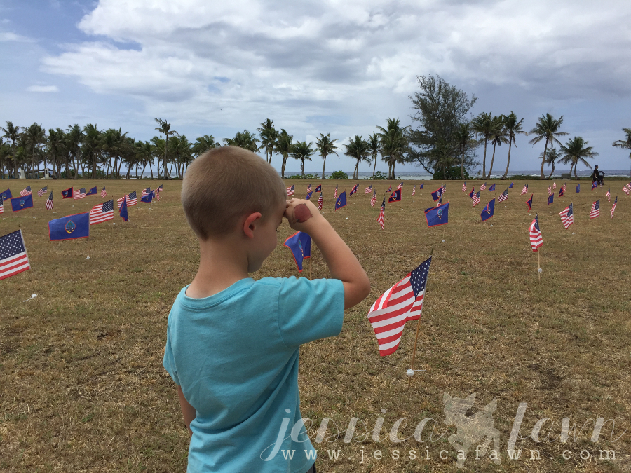 2016-05-30 Memorial Day Flags 5